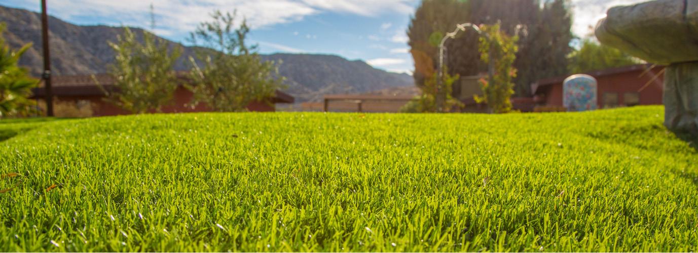 kunstgras gazon in zonnige grote tuin met uitzicht op berg